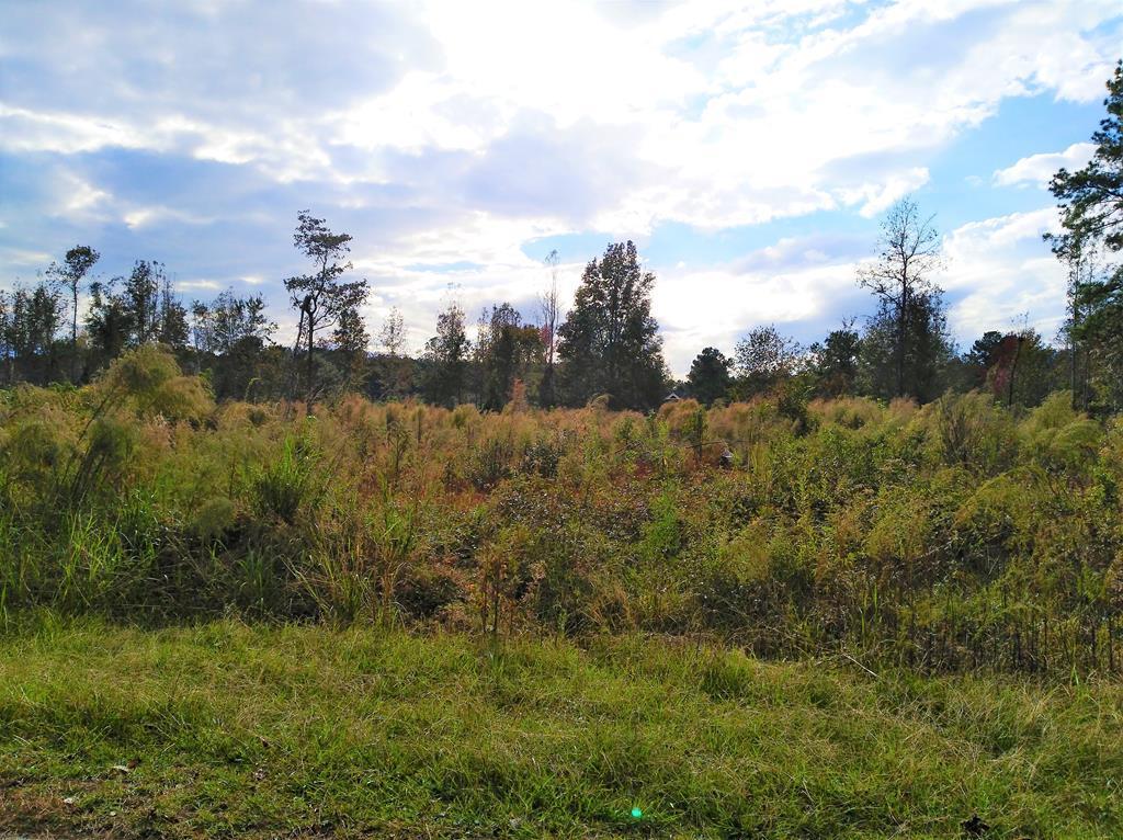 235 E. Emerald Lakes Dr. - Photo 1