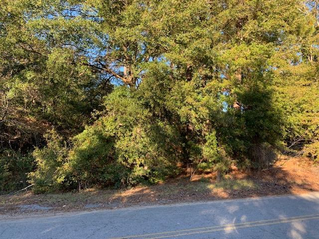 3571 Princess Pond Road, Summerton, SC 29148 (MLS #138761) :: The Litchfield Company