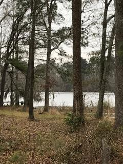 1347 Winnwood Ln, Summerton, SC 29148 (MLS #139021) :: Gaymon Gibson Group