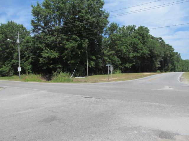 ? Washington/Currie, Hartsville, SC 29532 (MLS #140580) :: Gaymon Gibson Group