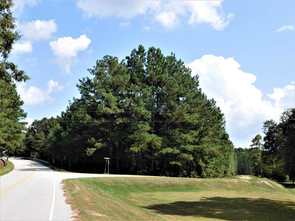 TBD Skinner Road - Photo 1