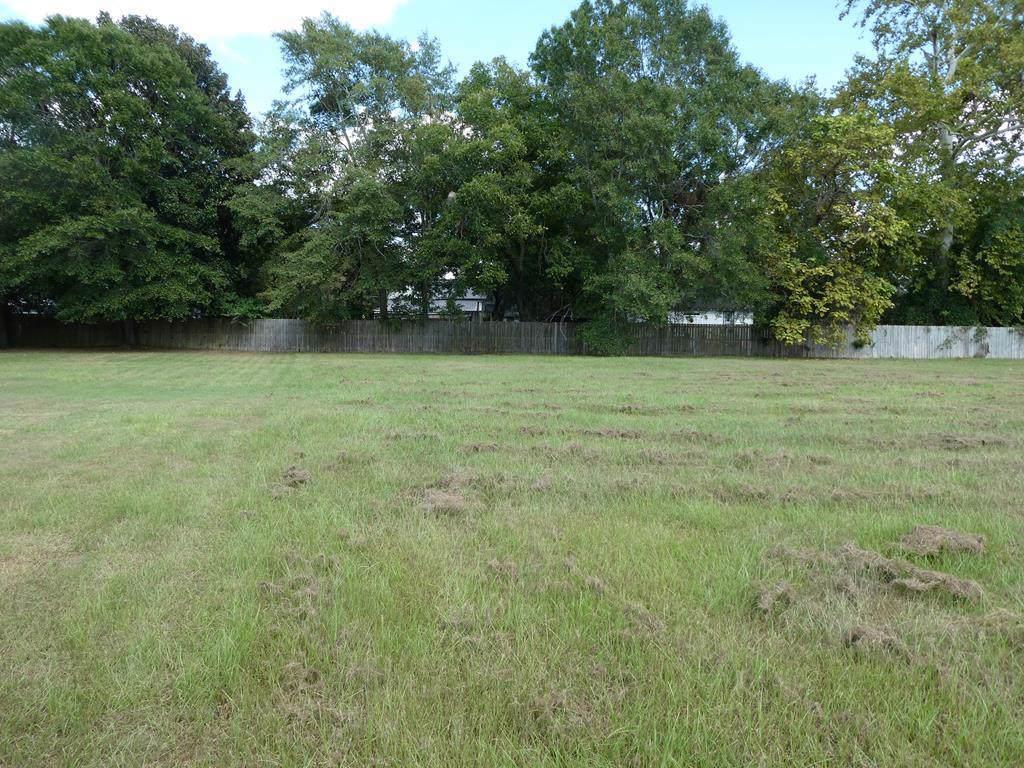 Lot 2 Sumter Court - Photo 1