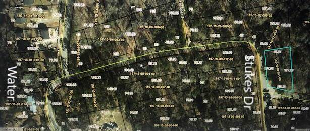 TBD Lot 263A, Stukes Rd, Manning, SC 29102 (MLS #142356) :: The Litchfield Company