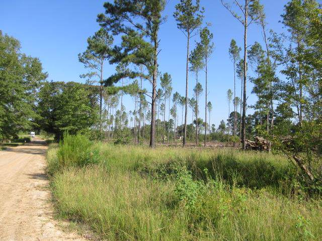 Lots - Easy Street, Rembert, SC 29128 (MLS #142388) :: The Litchfield Company