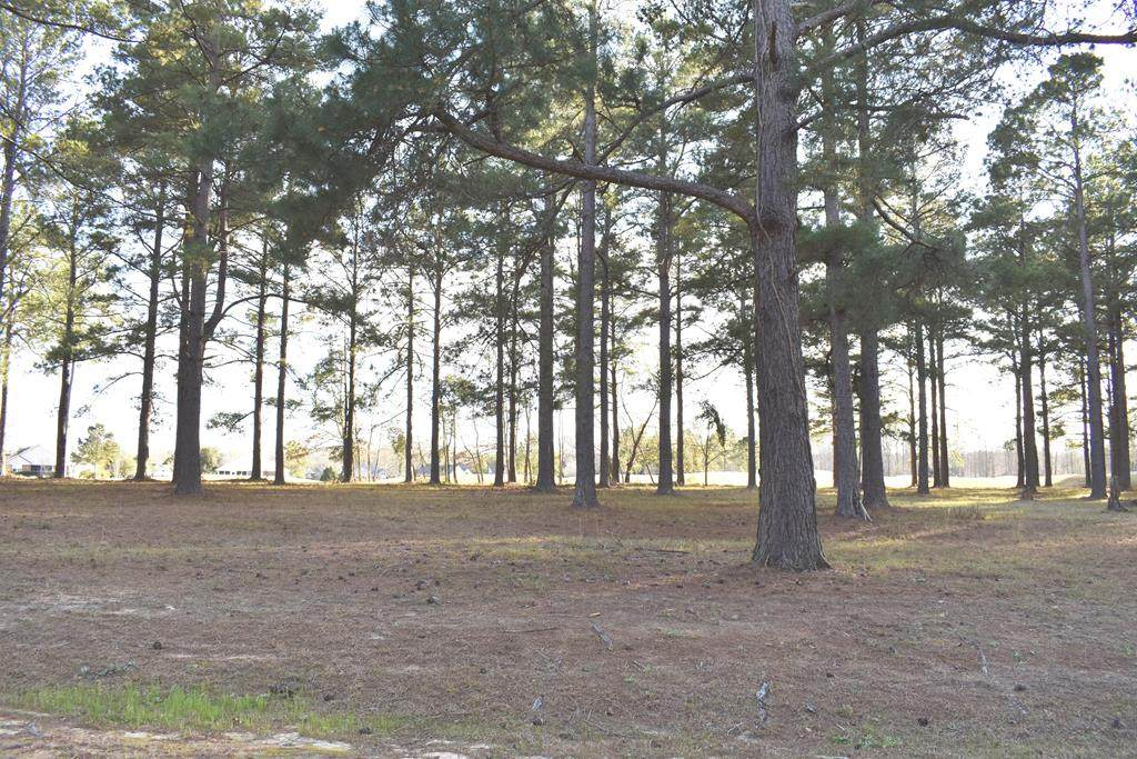 425 Pine Lake Ct. (L-12) - Photo 1