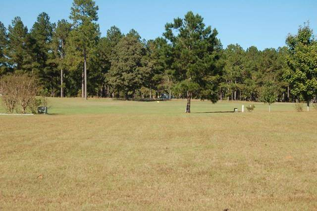 20 North Lake Cr. (R-11), Manning, SC 29102 (MLS #143602) :: The Litchfield Company