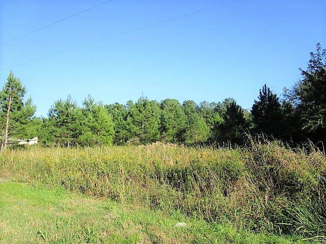 3.5 Acre Hwy 453, Holly Hill, SC 29059 (MLS #143988) :: The Litchfield Company