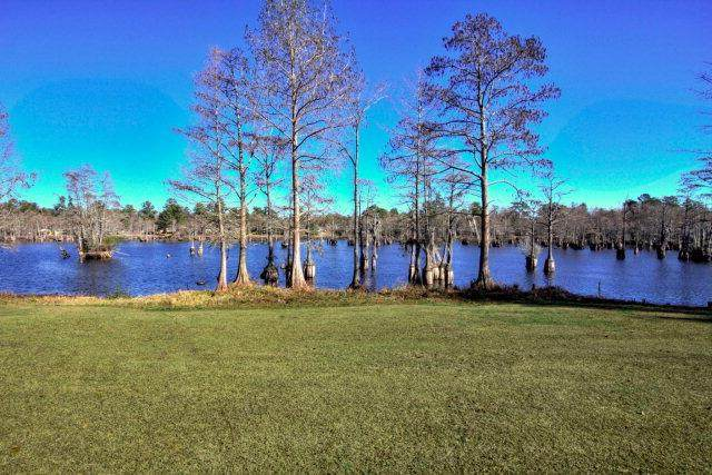 2365 Watersong Run, Sumter, SC 29150 (MLS #144350) :: The Litchfield Company