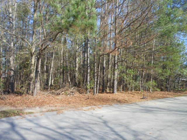 1000 Jessamine Trail, Sumter, SC 29150 (MLS #144441) :: The Litchfield Company