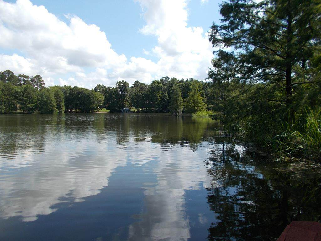 00 Broad River Annex - Photo 1