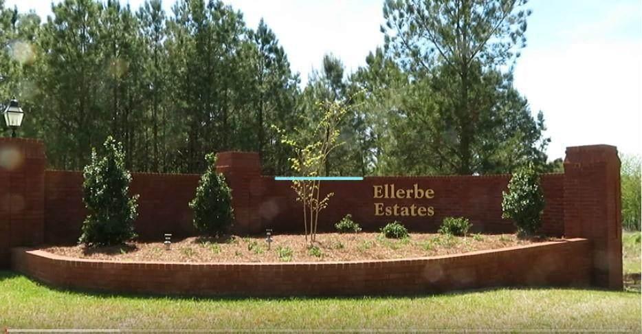 Lot 25 Ellerbe Estates - Photo 1