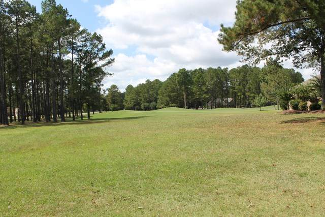 301 Plantation Drive(A-94), Manning, SC 29102 (MLS #146262) :: The Litchfield Company