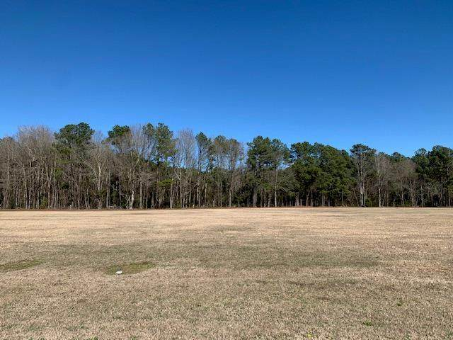 Lot 7 Palmetto Air Plantation - Photo 1