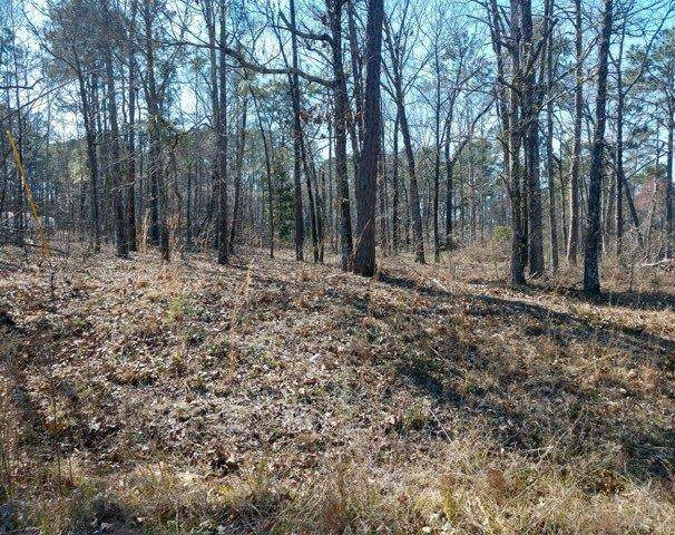 TBD Rockfish Drive, Manning, SC 29102 (MLS #146802) :: The Litchfield Company
