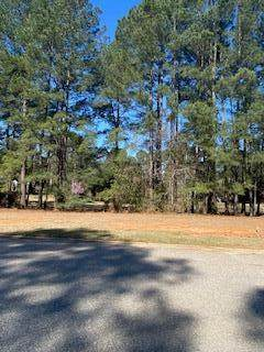 245 Idlelake Ct, Sumter, SC 29150 (MLS #146819) :: The Litchfield Company