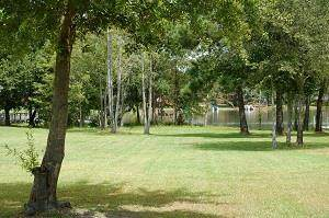 48 Woodlake  (C-22) - Photo 1