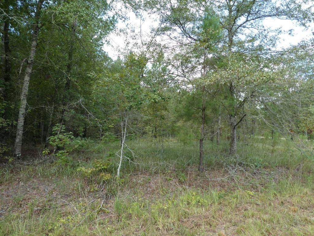 Lot 32 Hidden Oak Drive - Photo 1