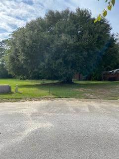 20 Saresden, Sumter, SC 29150 (MLS #149201) :: The Litchfield Company