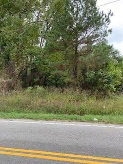0 Queen Chapel Rd, Sumter, SC 29153 (MLS #149202) :: The Litchfield Company
