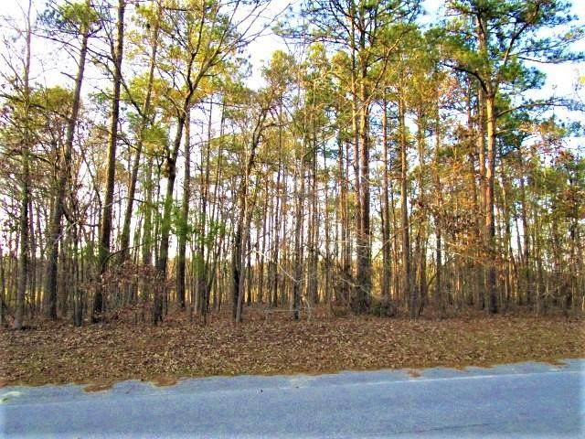 Lot 59 Sorin Cir, Santee, SC 29142 (MLS #131674) :: The Latimore Group