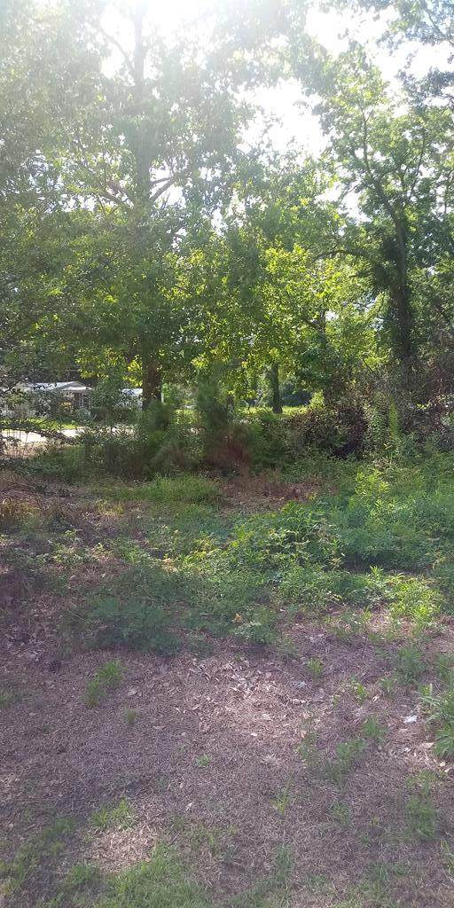 425 N. Jones Rd., Olanta, SC 29114 (MLS #144329) :: The Litchfield Company