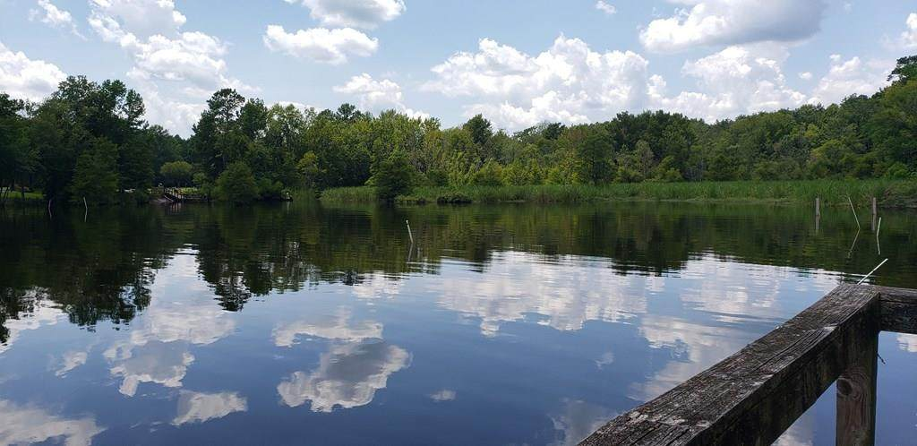 61 Ridge Lake Dr - Photo 1