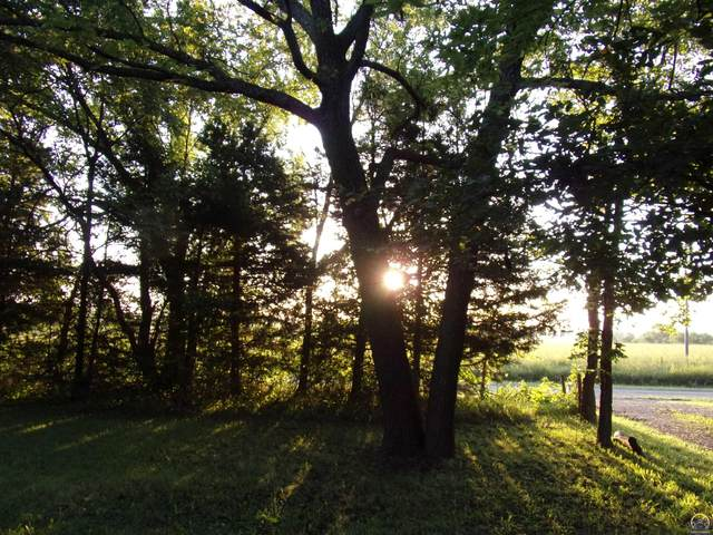 55 E 100th Rd, Overbrook, KS 66524 (MLS #220403) :: Stone & Story Real Estate Group