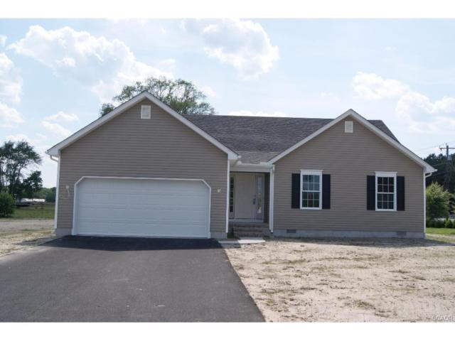 31919 Chelsea Court, Dagsboro, DE 19939 (MLS #703173) :: The Don Williams Real Estate Experts