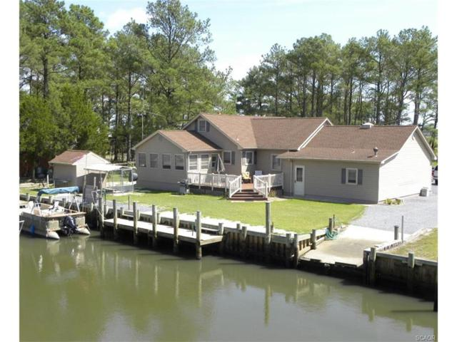 30161 New Castle Rd, Dagsboro, DE 19939 (MLS #713109) :: The Don Williams Real Estate Experts
