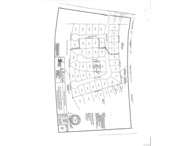12 Lots Palomino Drive, Selbyville, DE 19975 (MLS #713245) :: The Don Williams Real Estate Experts