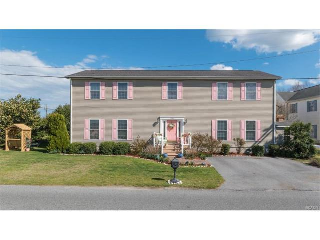 13382 Jefferson Ave, Selbyville, DE 19975 (MLS #718922) :: Barrows and Associates