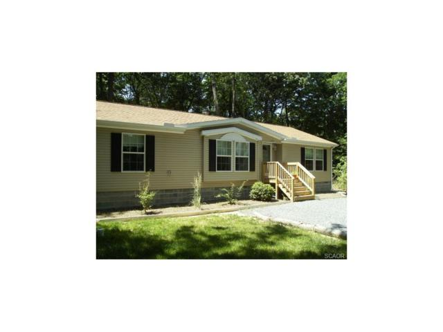 31154 Jerry Drive, Ocean View, DE 19970 (MLS #719119) :: The Don Williams Real Estate Experts