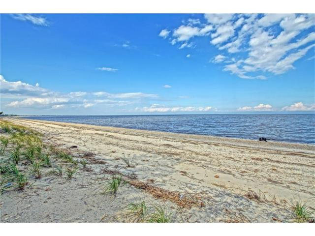 0 Horseshoe Dr #534, Slaughter Beach, DE 19963 (MLS #719632) :: Atlantic Shores Realty