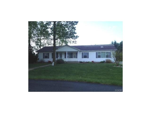 32510 Blanket, Dagsboro, DE 19939 (MLS #719733) :: The Don Williams Real Estate Experts