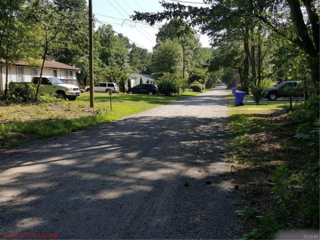 0 Canal Drive, Millsboro, DE 19966 (MLS #720664) :: Barrows and Associates