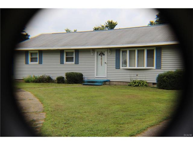 34911 Branchwood S, Frankford, DE 19945 (MLS #722666) :: Barrows and Associates