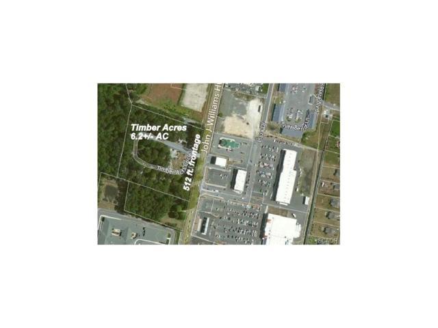 31878 Timber Acres, Millsboro, DE 19966 (MLS #722884) :: Barrows and Associates