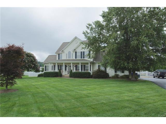 16417 Winding River Drive, Milton, DE 19968 (MLS #723154) :: The Don Williams Real Estate Experts