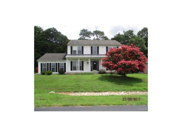 32346 Bayshore, Millsboro, DE 19966 (MLS #723183) :: The Don Williams Real Estate Experts
