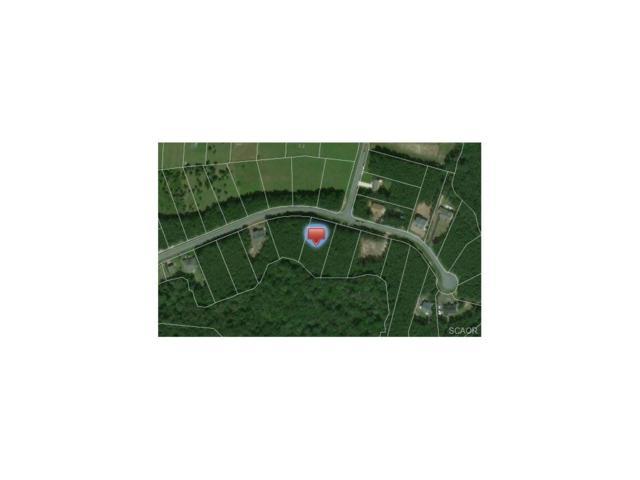24632 Hollytree, Georgetown, DE 19947 (MLS #723296) :: The Rhonda Frick Team
