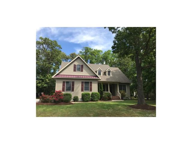 29783 Colony Drive, Dagsboro, DE 19939 (MLS #723597) :: The Allison Stine Team