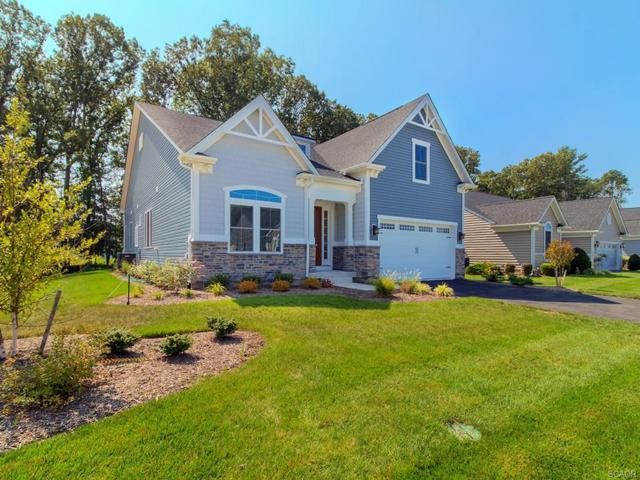 37464 Liverpool Ln, Rehoboth Beach, DE 19971 (MLS #723653) :: RE/MAX Coast and Country