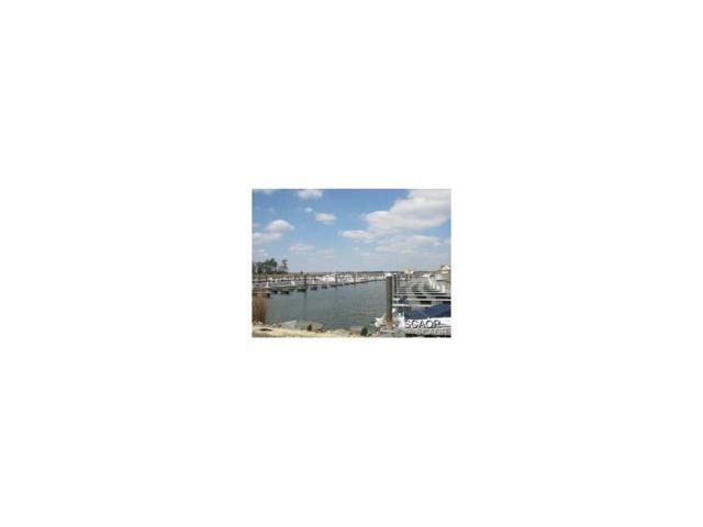 G26 Bay Colony Marina, Dagsboro, DE 19939 (MLS #723853) :: The Allison Stine Team
