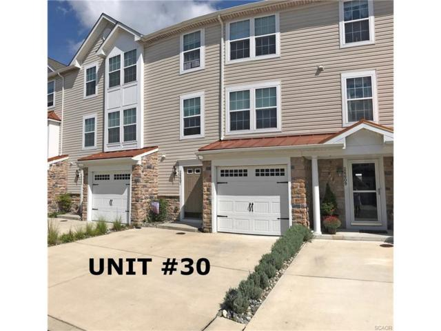 26607 Raleigh Road #30, Millsboro, DE 19966 (MLS #723947) :: RE/MAX Coast and Country