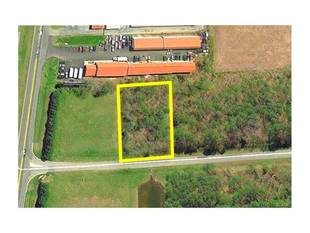 Lot 48 Red Fox Lane #48, Milton, DE 19968 (MLS #724863) :: The Don Williams Real Estate Experts