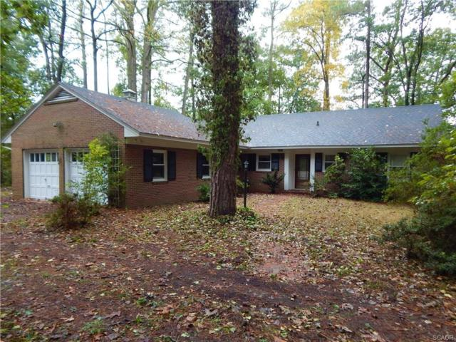 30449 Danwood, Delmar (Wicomico), MD 21875 (MLS #724864) :: Brandon Brittingham's Team