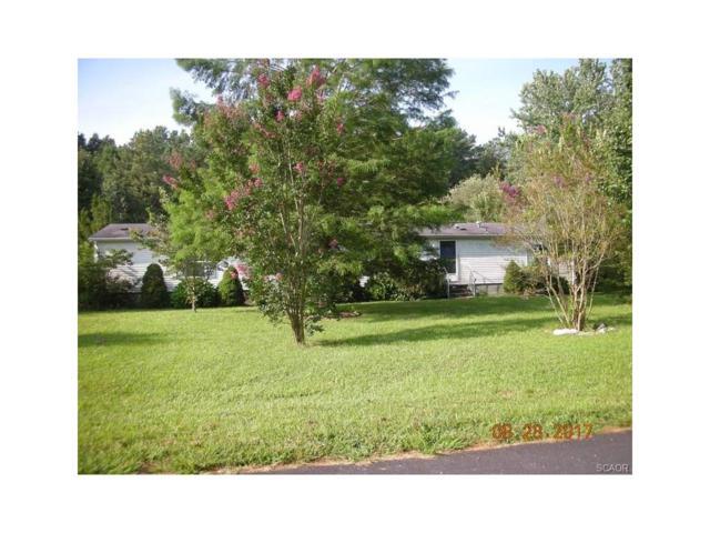 28506 W Meadowview, Milton, DE 19968 (MLS #724946) :: The Don Williams Real Estate Experts