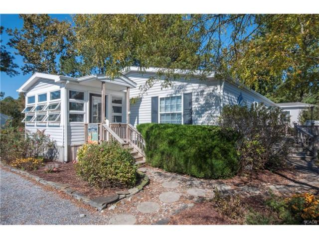 37025 Canvasback, Millsboro, DE 19966 (MLS #724988) :: Barrows and Associates