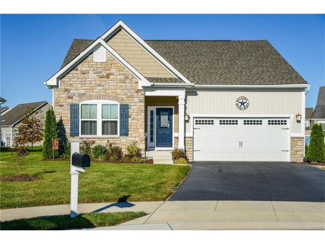 31567 Loggerhead Court, Selbyville, DE 19975 (MLS #725227) :: The Rhonda Frick Team