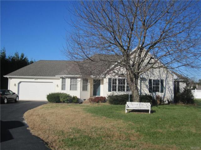 315 Country Place, Millsboro, DE 19966 (MLS #725849) :: The Don Williams Real Estate Experts